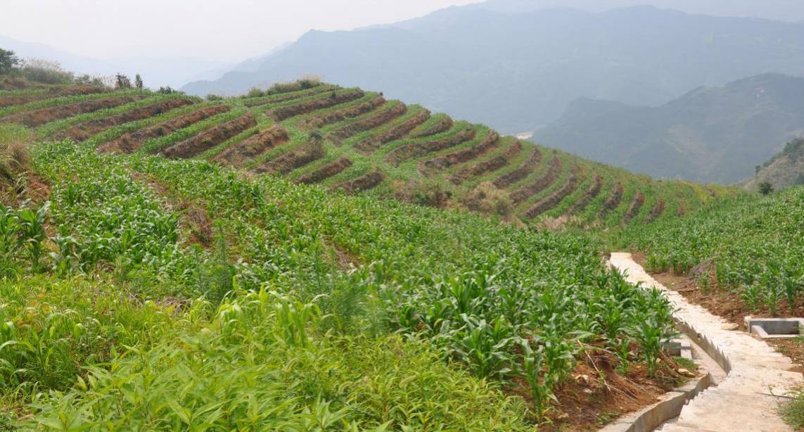 安徽省景湖农业股份有限公司